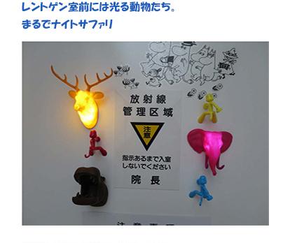 レントゲン室前には光る動物たち。まるでナイトサファリ
